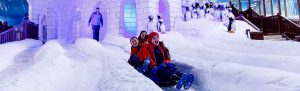 família se divertindo no Snowland