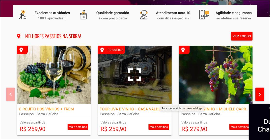 opções disponíveis no site da TourOn