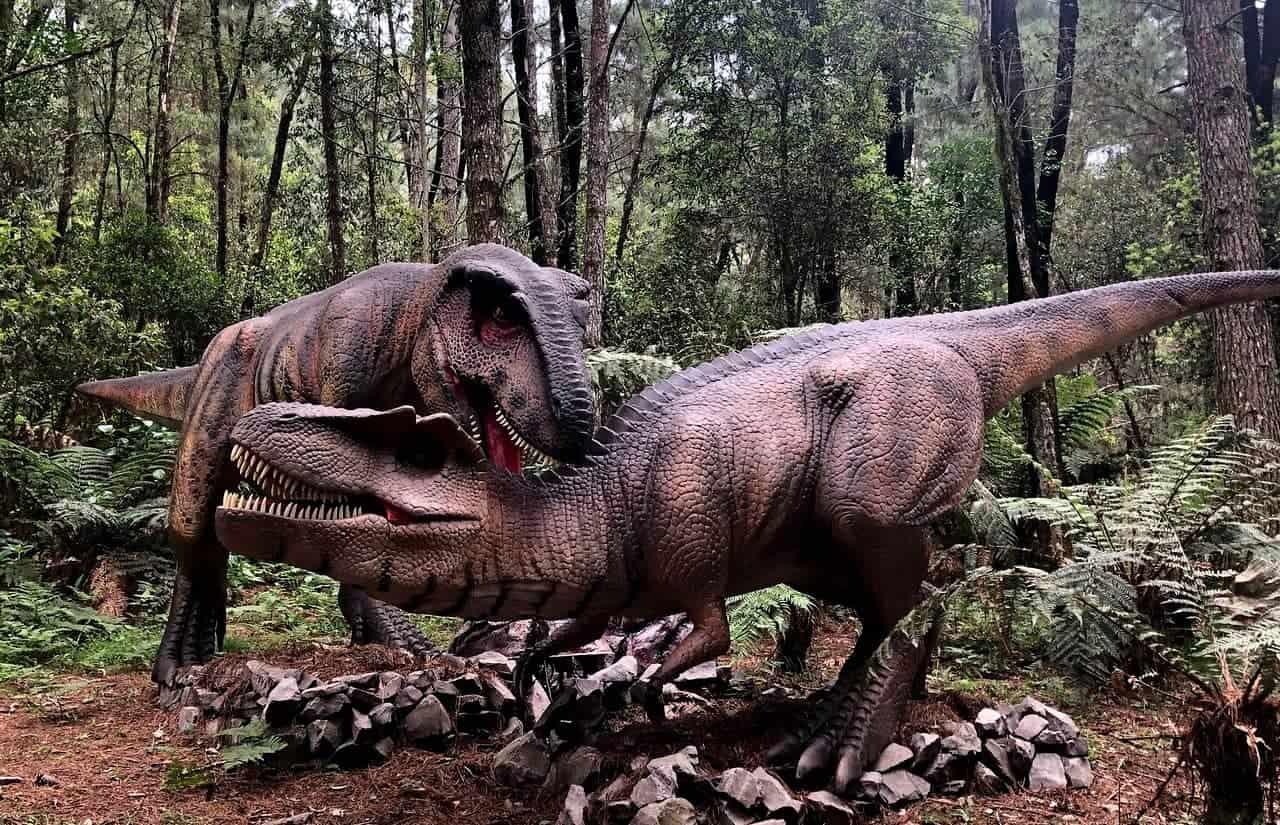dinossauros brigando