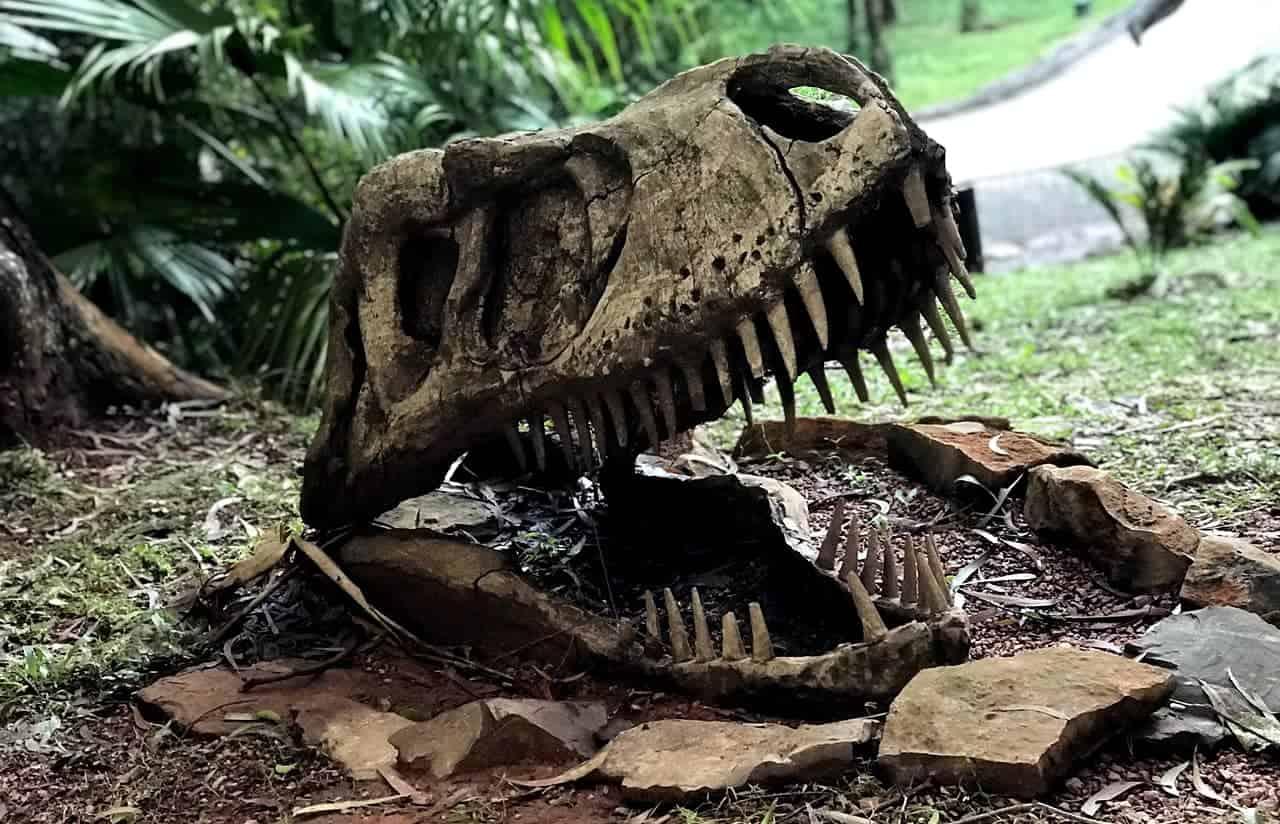 vale dos dinossauros gramado vale a pena